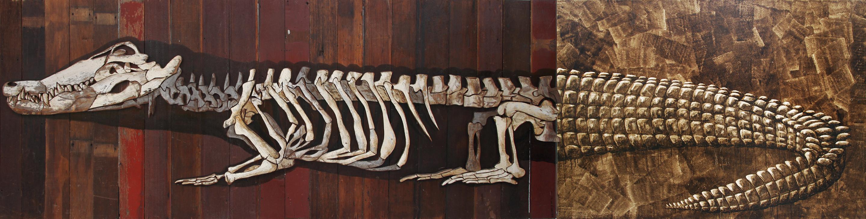 'Boyo' (Buaya)- Isi dan Tulang