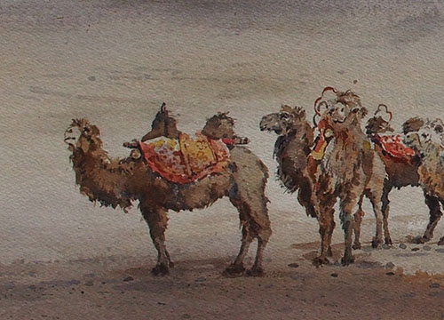 March of The Camels VI