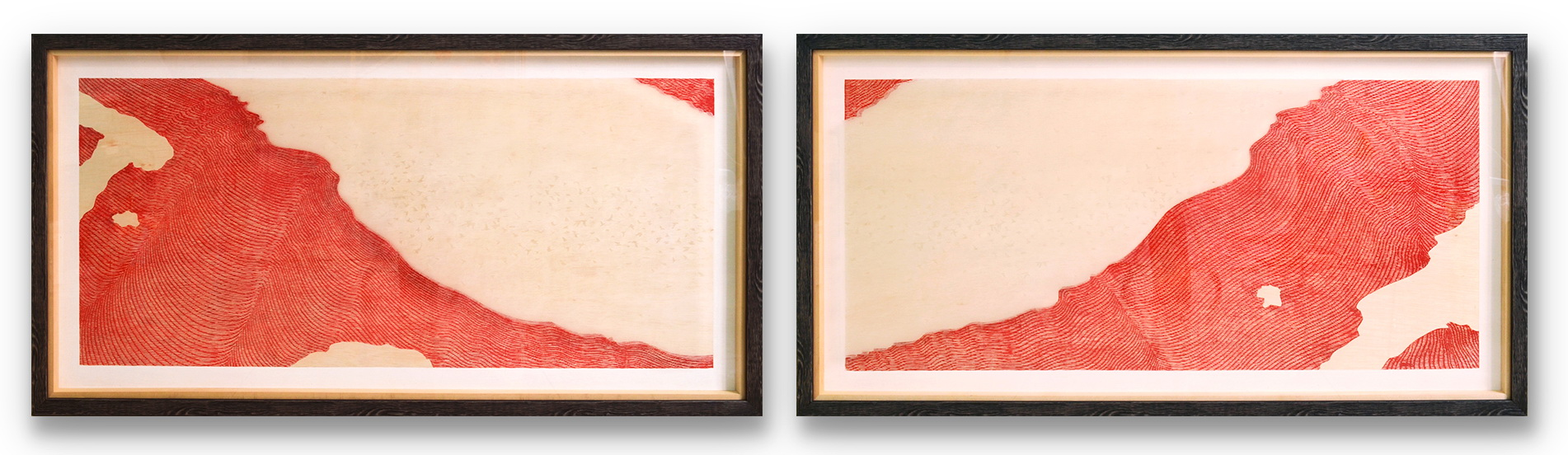 Transformation III ( Diptych )