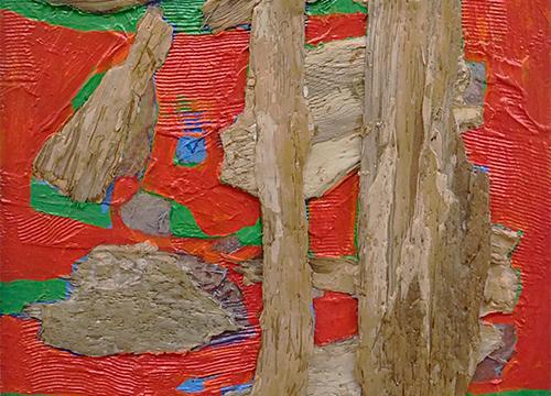 Eucalyptus image 42