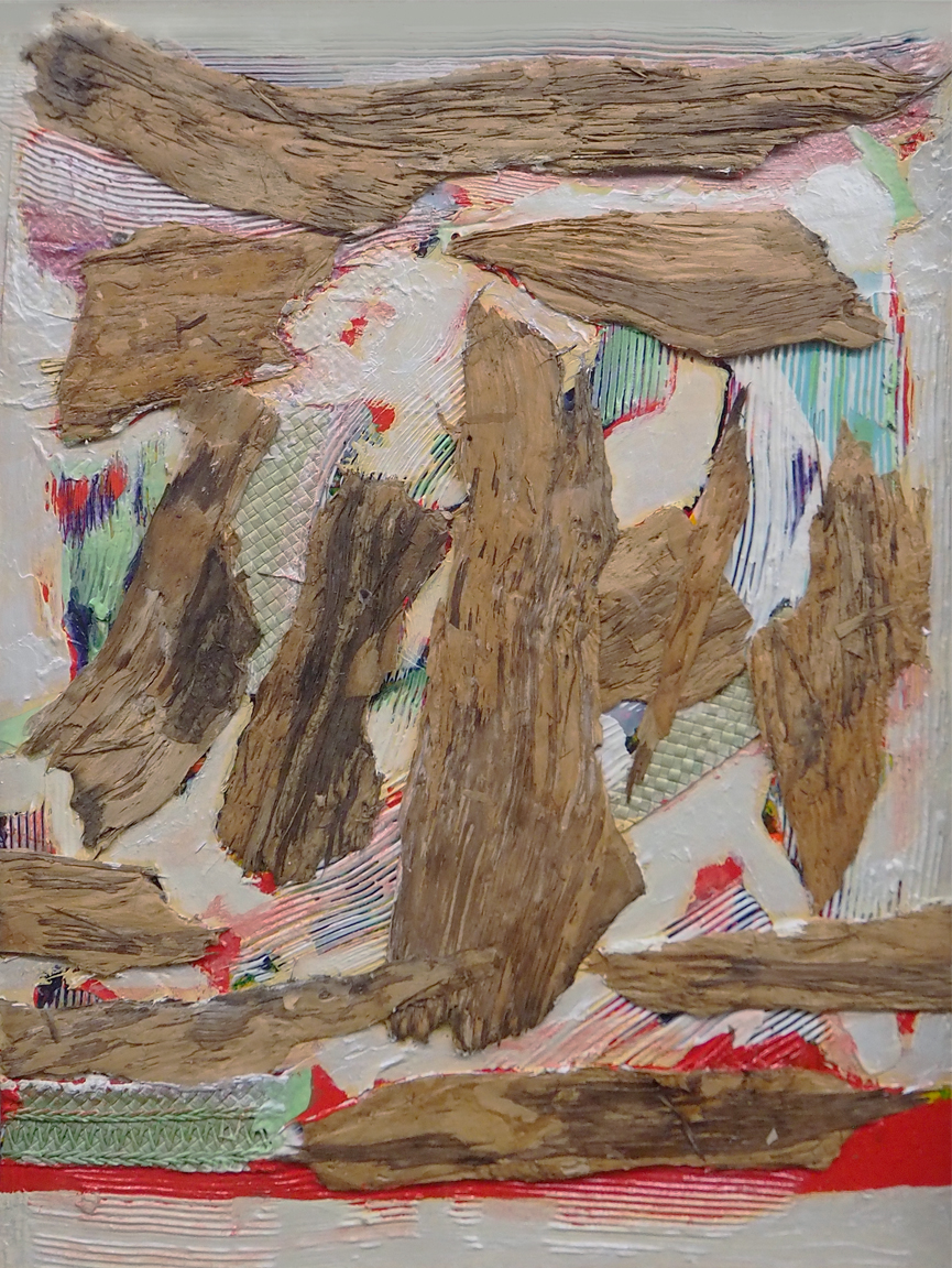 Eucalyptus Image 17