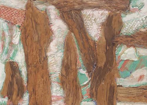 Eucalyptus Image 26