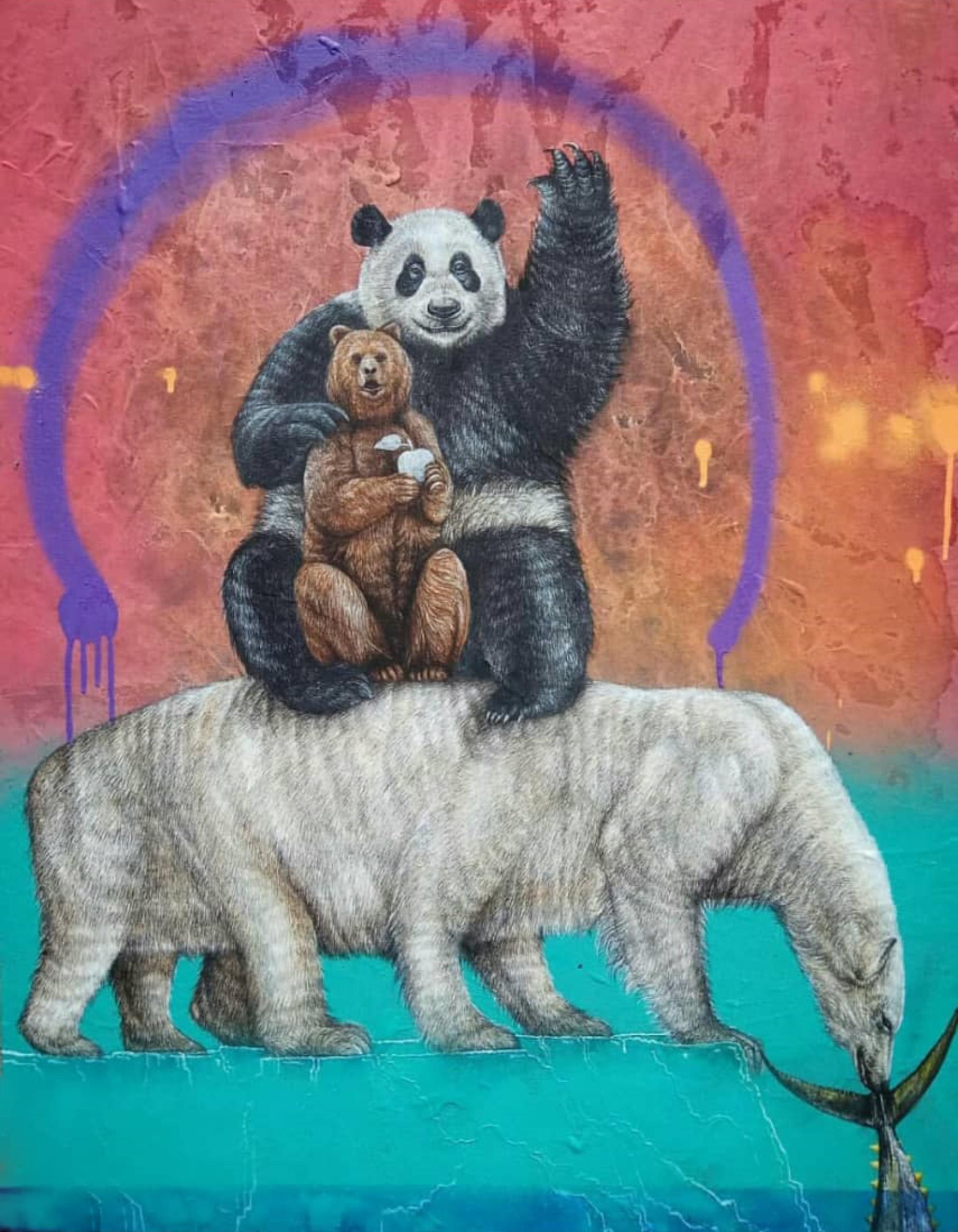 Bare Bear – Agus