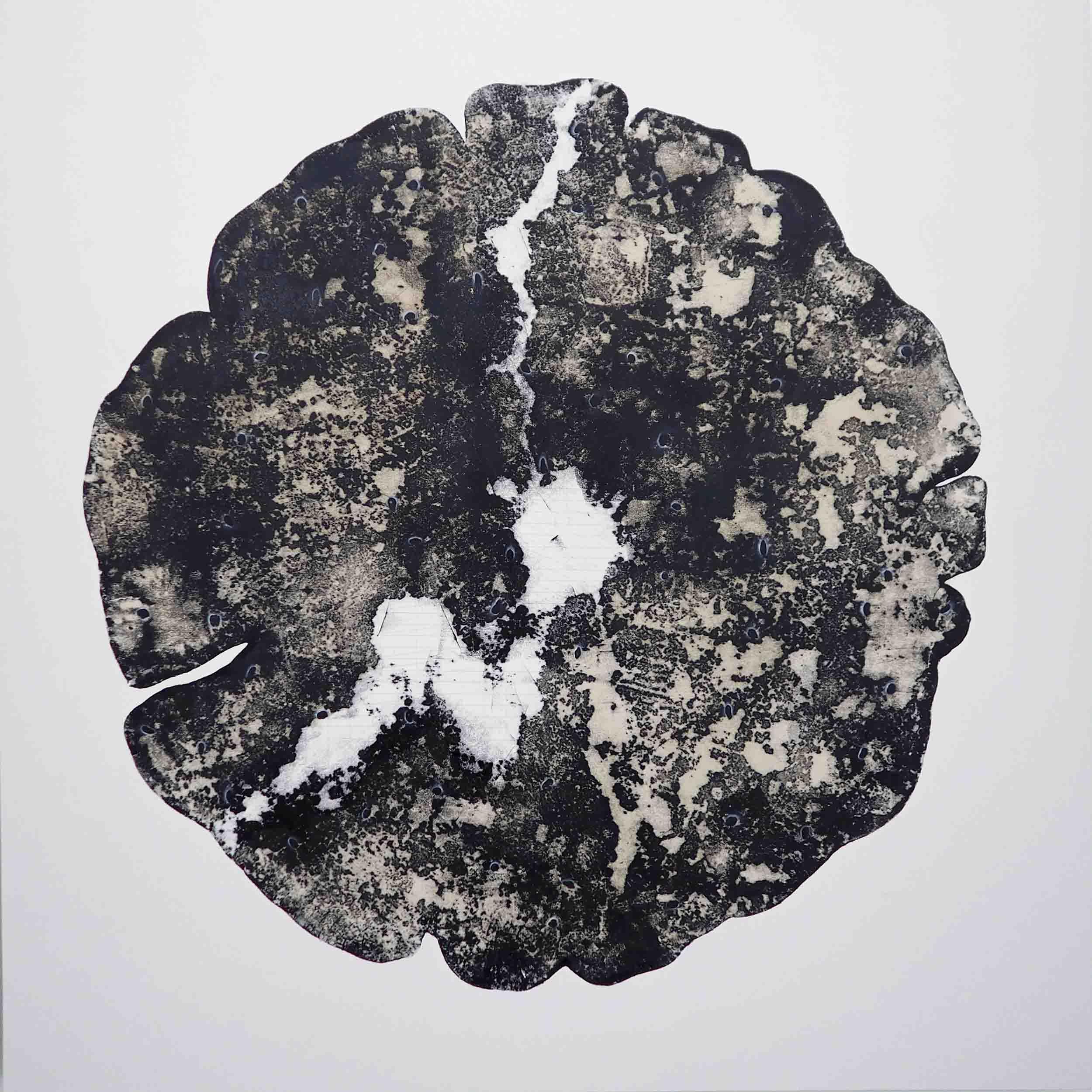 Bicara Pohon IV – Preview FS