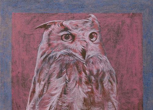 Still Life - Owl